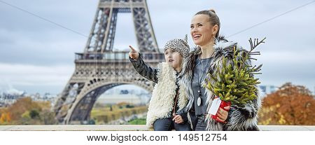 Mother And Daughter With Christmas Tree Pointing On Something