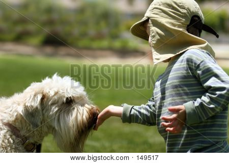 poster of boy feeding his dog