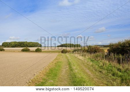 Minster Way Footpath