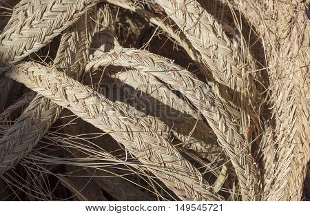 Esparto strips plaited ready for join them to make crafts