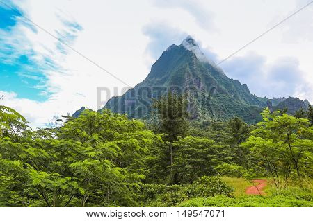 HDR image of the interior of the island of Moorea in the French Polynesia with her exuberant vegetation and mountains.