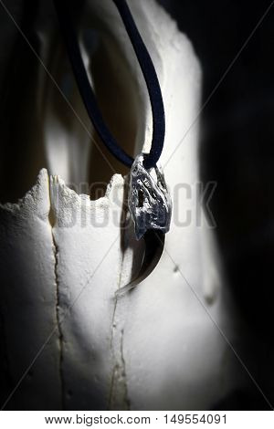 Claw of fox with metal pommel - a magic talisman. Protection and Paganism