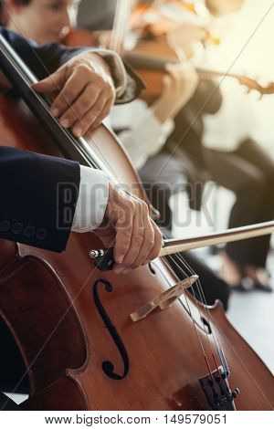 Professional cello player's hands close up he is performing with string section of the symphony orchestra