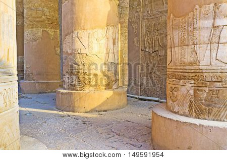 The carved decors preserved on columns and walls in pronaos of old Kom Ombo Temple in Egypt.