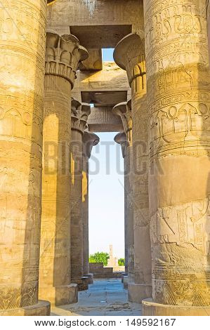 The walk among the raws of columns with ancient reliefs in Kom Ombo Temple Egypt.
