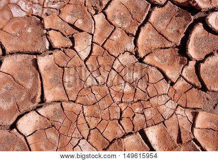 dry mud background texture. Global Warming symbol
