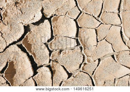 dry mud desert background texture. Global Warming