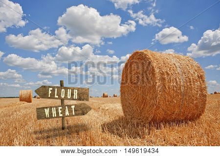 Flour or Wheat wooden direction sign in agricultural field.