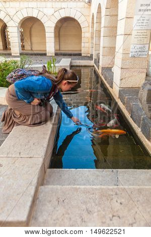 Tabgha, Israel - February 21, 2013: Young Woman Touch Koi Pond With Japan Carps
