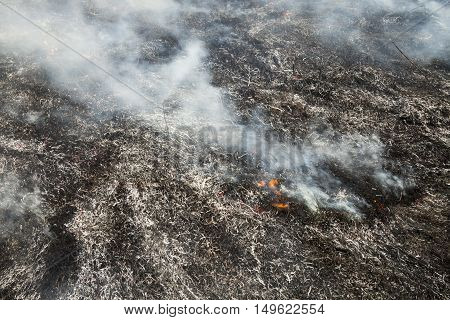 Burnt smoking grass after the big fire in the field.