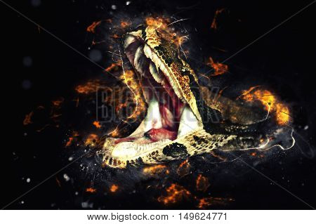 Royal boa (Python regius) opens mouth. Fire illustration