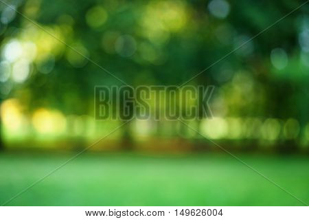 park summer blur bokeh background, real lens blur