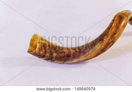 Shofar a tallit on a white background - rosh hashanah jewesh holiday concept