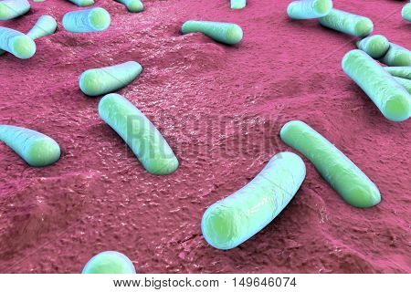 Bacteria on surface of skin, mucous membrane or intestine, model of Escherichia coli, Salmonella, Mycobacterium tuberculosis, simulating electron microscope, 3D illustration