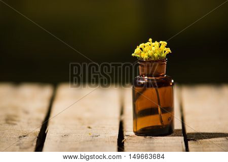 Small brown medicine bottle for magicians remedy, yellow flowers placed inside, sitting on wooden surface.