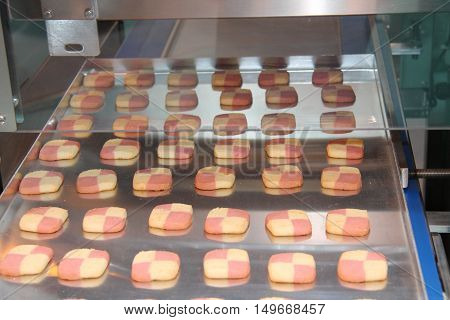 Making Square Biscuits on a Food Production Machine.