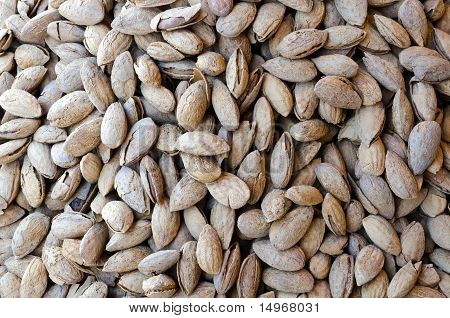 Tasty Bunch Of Almonds In Shells