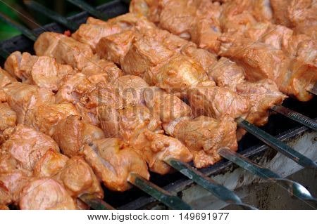 a Shashlik on skewers closeup on grill