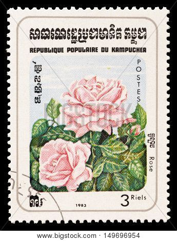 CAMBODIA - CIRCA 1983 : Cancelled postage stamp printed by Cambodia, that shows Rose flower.