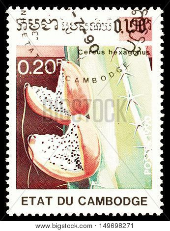 CAMBODIA - CIRCA 1990 : Cancelled postage stamp printed by Cambodia, that shows Cereus Hexagonus cactus.