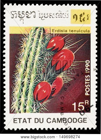 CAMBODIA - CIRCA 1990 : Cancelled postage stamp printed by Cambodia, that shows Erdisia Tenuicula cactus.