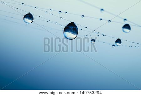 spiderweb with dewdrops 3d illustration on blue background