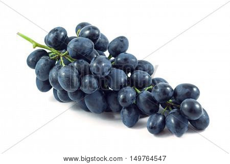 Dark grapes Isolated on white background fruit.