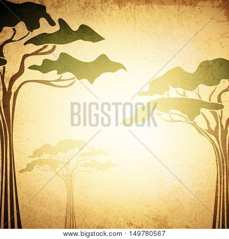 Africa Abstract Acacia Tree Grunge Vintage Background