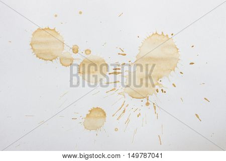 Spot from a cup of coffee on white paper / Coffee Stains Set / coffee paint stains