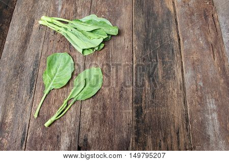 Chinese kale fresh vegetable on wooden table background Top view with copy space.