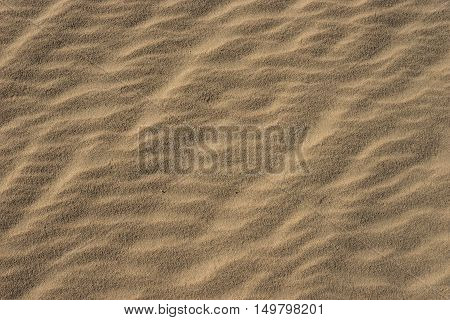 Wavy Lines Of Sand Grains