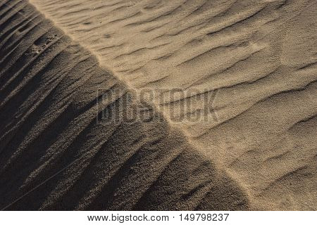 Ridge Of Sand Grains