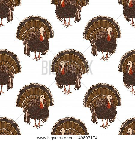 Vector Seamless Turkey Pattern.