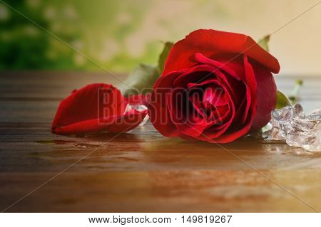 Sigle Red Rose With Ice On Wooden Table In Vintage Style