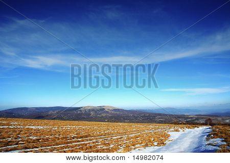 mountain yellow field