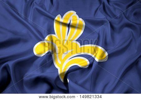 Waving Flag Of Brussels Region, Belgium 1991 - 2015