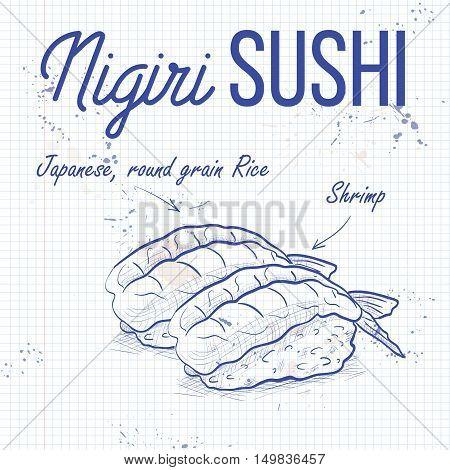 Vector nigiri sushi sketch, Ebi sushi on a notebook page