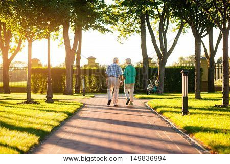 Back view of elderly couple. People walk and hold hands. Live and learn to love. See life in best colors.