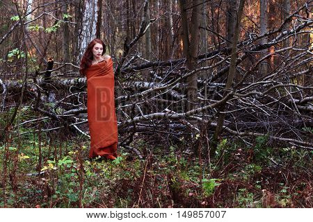 Girl in plaid stands near downed trees in forest full body portrait