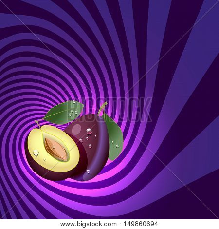 Striped spiral plum confectioners background. Plum fruit with water drops. Plum spiral tunnel. Fruit spiral for cover design of food with plum flavour. Vector illustration.