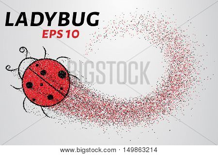 Ladybug of particles. Silhouette ladybugs of small circles.