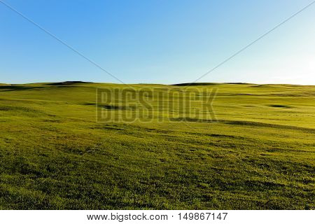 A photo similar to the windows xp landscape
