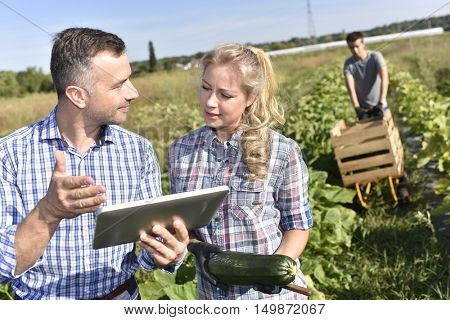 Farming instructor with apprentice in agricultural field