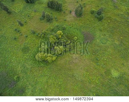 Aerial view forest and countryside view at summer time