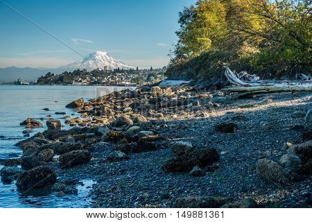 A view of Mount Rainier from Ruston Washington.