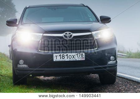 Black Toyota Highlander Car In Foggy Morning