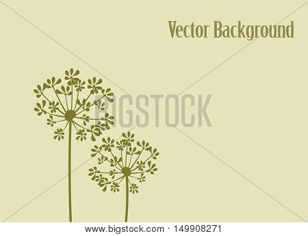 vector illustration of fennel flower background with copyspace