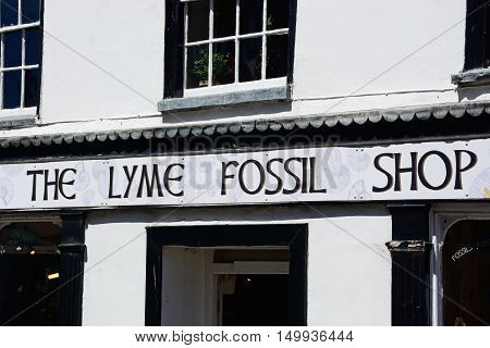 LYME REGIS, UNITED KINGDOM - JULY 18, 2016 - Front view of The Lyme Fossil Shop Lyme Regis Dorset England UK Western Europe, July 18, 2016.