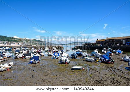 LYME REGIS, UNITED KINGDOM - JULY 18, 2016 - Boats and yachts moored in the harbour with views towards the town and coastline Lyme Regis Dorset England UK Western Europe, July 18, 2016.