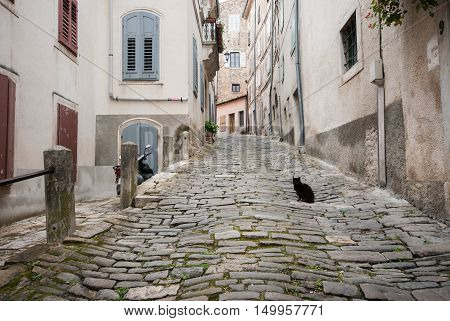 Famous Motovun, Istra, Croatia